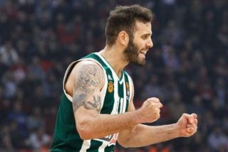 Nikos Pappas / fot. Euroleague